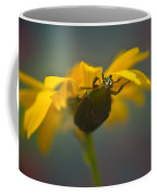 Underside Of Daisy Coffee Mug