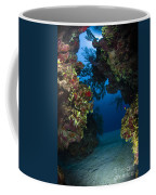 Underwater Crevice Through A Coral Coffee Mug