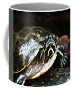 Underwater Turtle Coffee Mug
