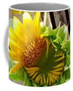 Unfolding Sunflower Coffee Mug