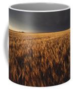 United States, Kansas, Summer Thunder Coffee Mug