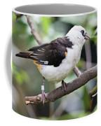 Unknown White Bird On Tree Branch Coffee Mug
