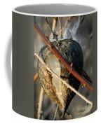 Unspent Milkweed Coffee Mug