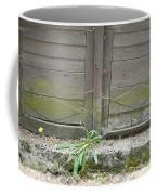 Unused Door Coffee Mug