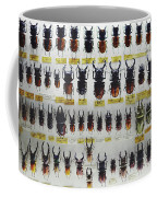 Unusual Pattern Made Out Of Many Stag Beetles Of Different Sizes Coffee Mug