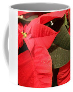Up Close And Personal Poinsettia  Coffee Mug