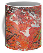 Up Close Flamboyant Coffee Mug