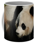 Up Close With A Gorgeous Giant Panda Bear Coffee Mug