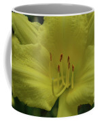 Up-close With A Very Bright Yellow Daylily Flower Coffee Mug