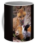 Up To No Good... Coffee Mug