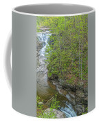 Upper And Middle Falls At Mine Kill State Park Coffee Mug