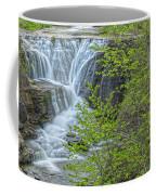 Upper Falls At Mine Kill State Park Coffee Mug