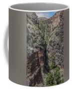 Upper Falls Coffee Mug