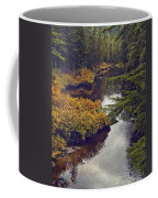 Upper Salamander Creek Coffee Mug