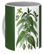 Urtica Dioica, Often Called Common Nettle Or Stinging Nettle Coffee Mug