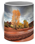 Utah Desert Wash Coffee Mug