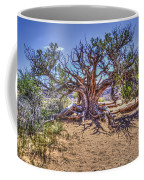 Utah Juniper On The Climb To Delicate Arch Arches National Park Coffee Mug