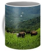 Vacas De Ahuachapan Coffee Mug