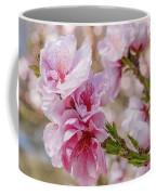 Valley Blossoms Coffee Mug