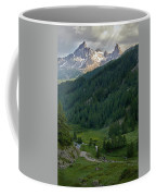 Valley In The French Alps Coffee Mug