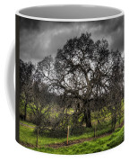 Valley Oak Coffee Mug