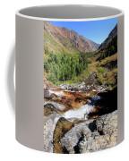 Valley Of Streams  Coffee Mug by Sean Sarsfield