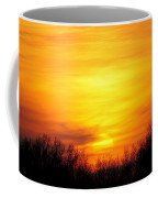 Valley Of The Sun Coffee Mug