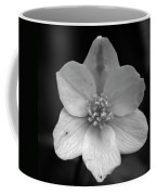 Vanishing Beauty 3 Coffee Mug