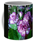 Variegated Carnations Coffee Mug