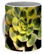 Variegated Succulent Coffee Mug