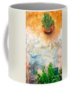 Vase On Decayed Wall Coffee Mug