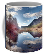 Vaseux Reflections Coffee Mug