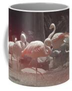 Vegas Magic Coffee Mug