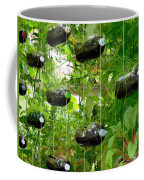 Vegetable Growing In Used Water Bottle 4 Coffee Mug