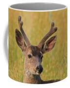 Velvet Coffee Mug
