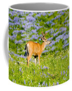 Velvet On Lupine Coffee Mug
