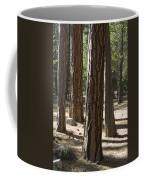 Vertical Of A Stand Of Ponderosa Pine Coffee Mug