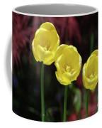 Very Blooming And Flowering Trio Of Yellow Tulips Coffee Mug
