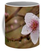 Very Early Peach Blooms Coffee Mug