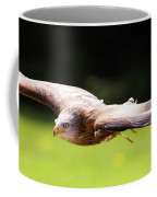 Very Low Pass Coffee Mug