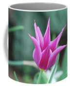 Very Pretty Blooming Pink Spikey Tulip Flower Blossom Coffee Mug