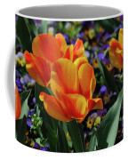Very Pretty Colorful Yellow And Red Striped Tulip Coffee Mug