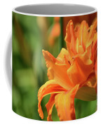 Very Pretty Double Orange Daylily Flowering In A Garden Coffee Mug