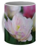 Very Pretty Pale Pink Parrot Tulip Flower Blossom Coffee Mug