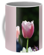 Very Pretty Pale Pink Tulip Blossom In Spring Coffee Mug