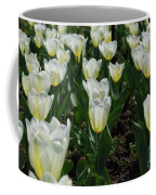 Very Pretty Spring Garden With Flowering White Tulips Coffee Mug