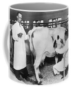 Vets Give Cow A Physical Coffee Mug