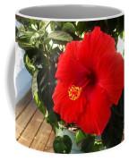 Vibrancy Coffee Mug
