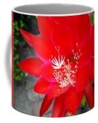 Vibrant Cacti Coffee Mug