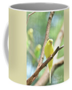 Vibrant Yellow Budgie Parakeet In The Summer Coffee Mug